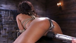 Appetizing nicely packed Demi Sutra is tied up and masturbated hard